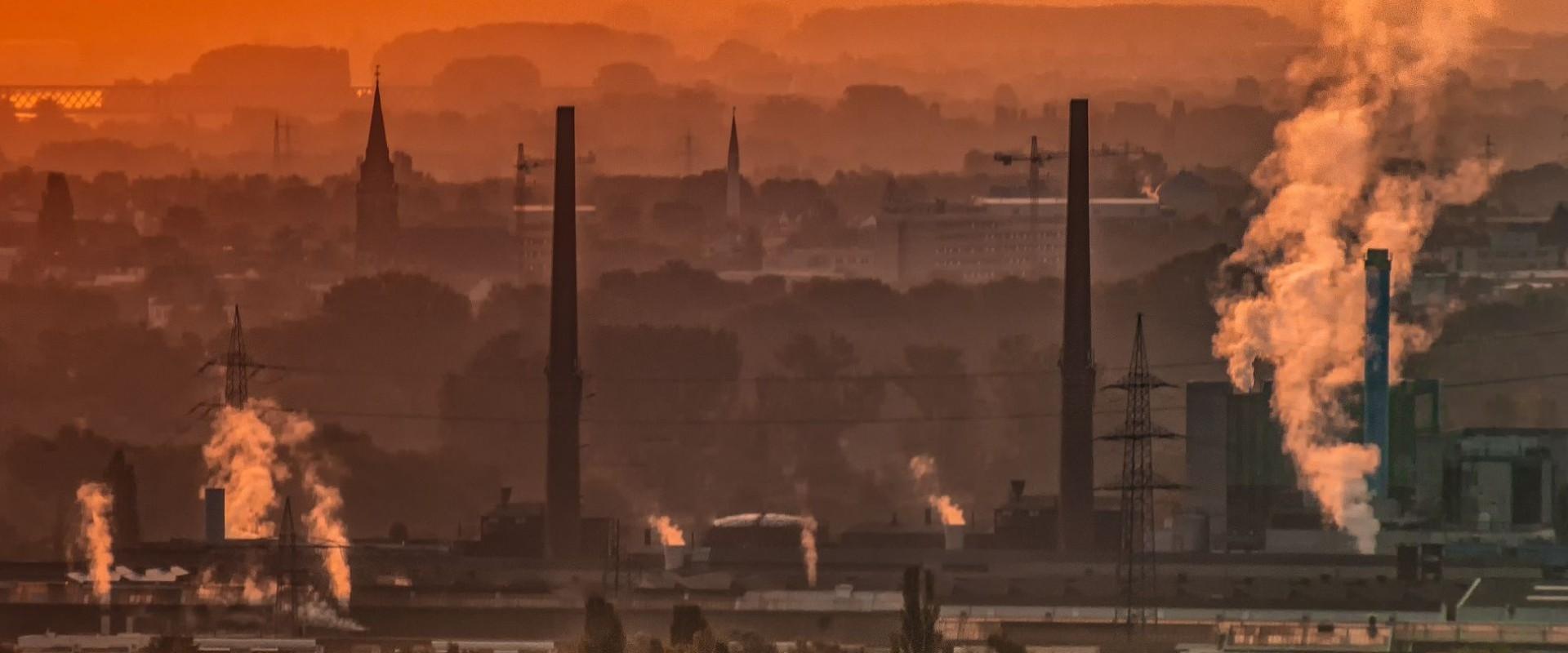 Jak ograniczyć negatywny wpływ smogu na zdrowie?