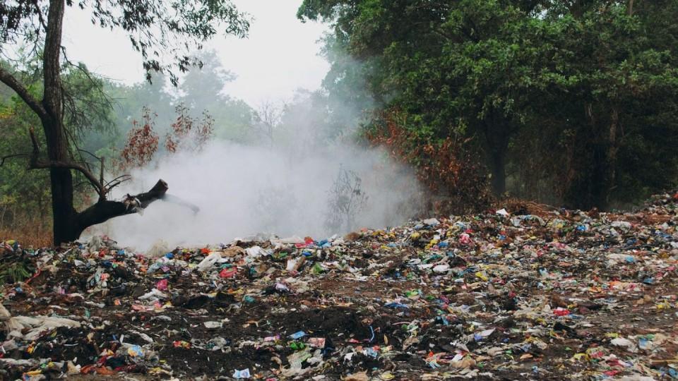 """Świat tonie w plastiku. Rezygnacja z """"foliówek"""" może pomóc środowisku"""