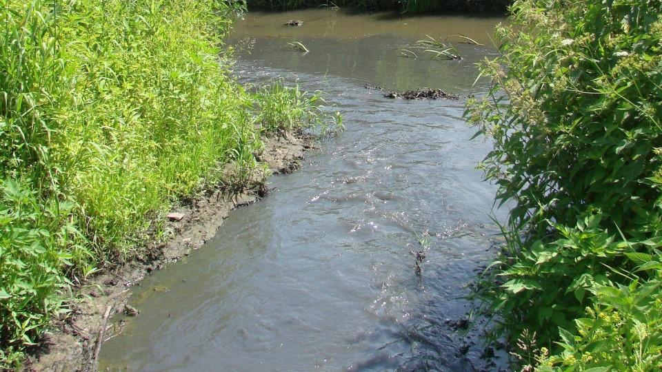 WIOŚ przeprowadził kontrolę wód Zagożdżonki